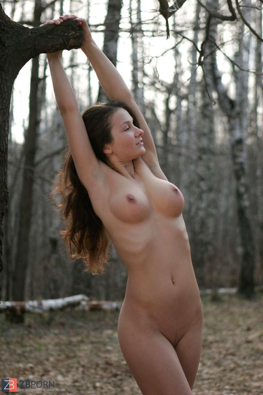 Im Wald Porn